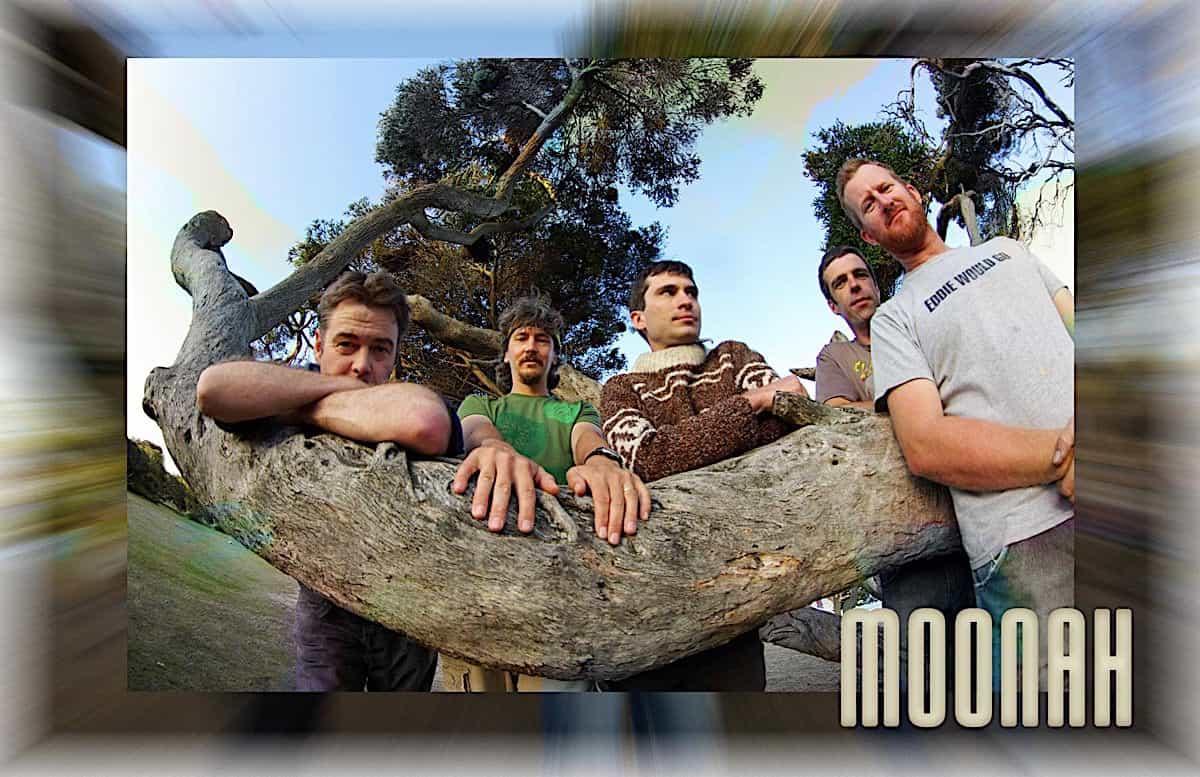 Moonah 006